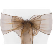 lazo organza chocolate