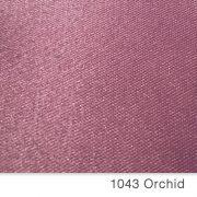 R34orquidea