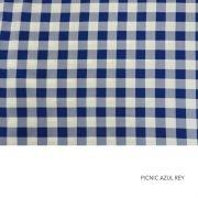 PICNIC AZUL REY