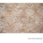 ROSA SATIN CHAMPAGNE