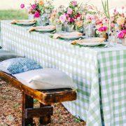 picnic menta montaje